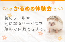 かるめの体験会(無料)