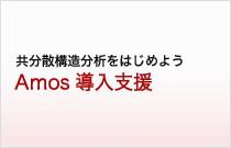 AMOS導入支援サービス